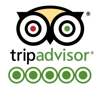 paris palms tripadvisor